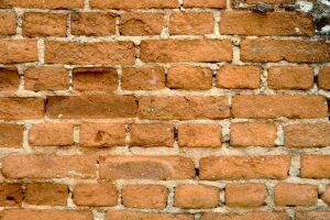 muro_teijolos