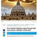 """""""Católicos Pró-Família rejeitam relatório preliminar do Sínodo, chamando-o de"""