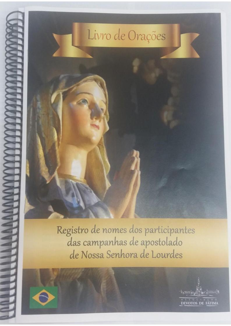 Livro Campanha de Lourdes