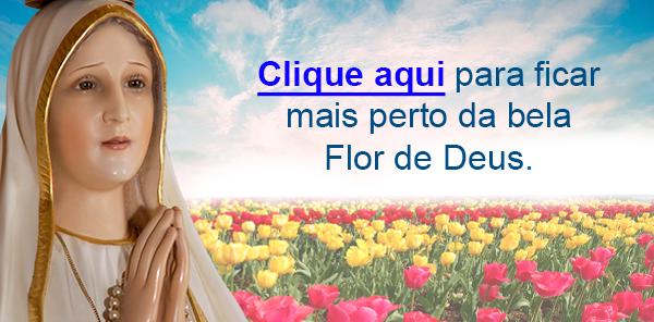 Botão Apóstolos de Fátima no texto Hino de Nossa Senhora de Fátima - Ave de Fátima (Treze de Maio)
